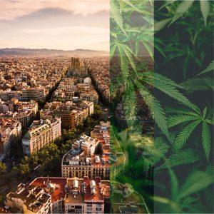 La era de los clubes de cannabis: Barcelona y más allá